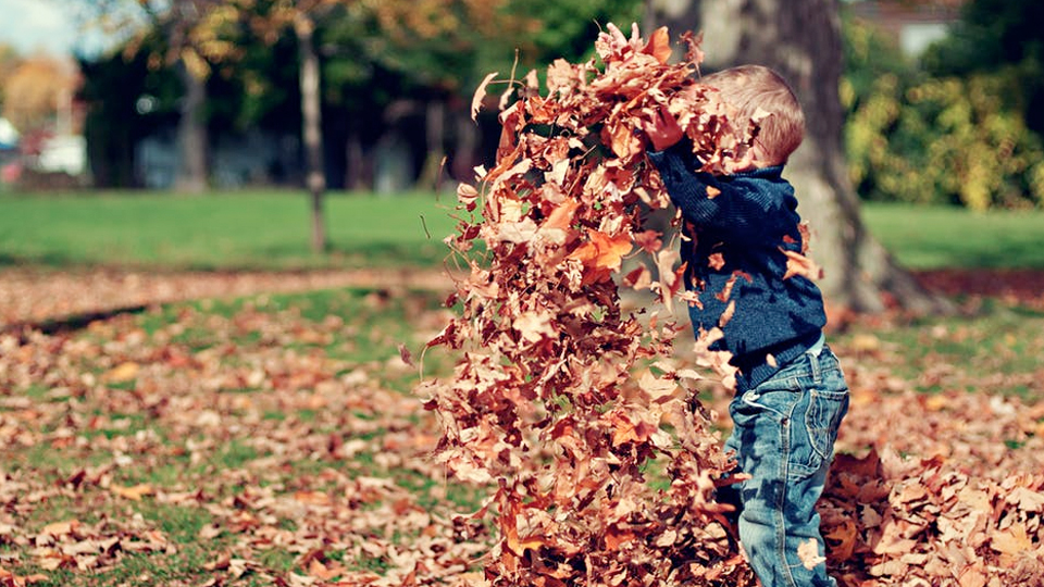 Fun Things For Kids To Do In the Fall